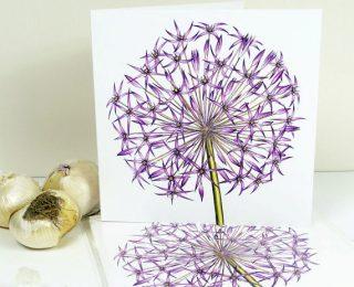 Allium Christophii Greeting Card