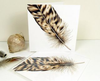 Owl feather greeting card