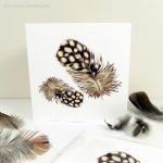 Quail Feather Greeting Card